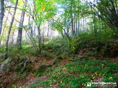 Ancares lucenses; viaje Puente noviembre; excursiones fin de semana desde madrid